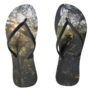 Forest Light Flip Flops Thongs