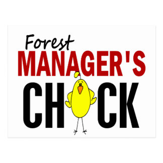 Forest Manager's Chick Postcard