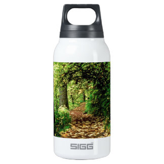 Forest Maple Lined Silver Trail Silver Falls 0.3L Insulated SIGG Thermos Water Bottle