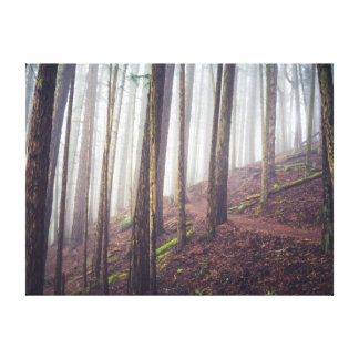 Forest Mist | Canvas Print