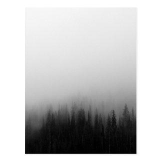Forest Nature Landscape Scene Foggy Mystical Postcard