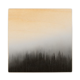 Forest Nature Landscape Scene Foggy Mystical Wood Coaster