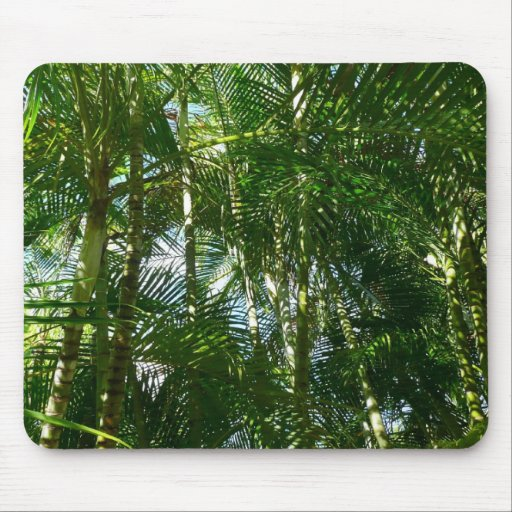Forest of Palm Trees Mousepad