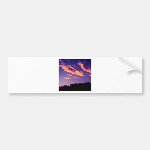 Forest Painting Sky Bumper Stickers
