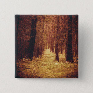 Forest Path ... 15 Cm Square Badge