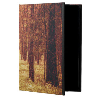 Forest Path... Cover For iPad Air