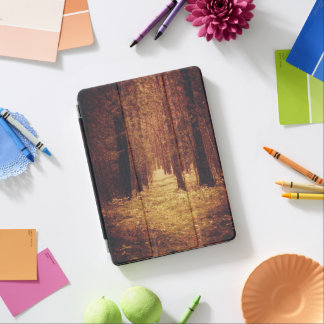 Forest Path... iPad Air Cover