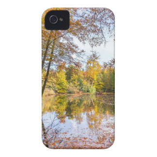 Forest pond covered with leaves in winter season iPhone 4 Case-Mate case