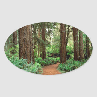 Forest Prairie Redwoods Park Oval Sticker