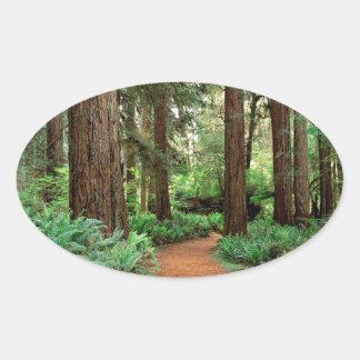 Forest Prairie Redwoods Park Oval Sticker