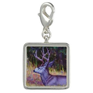 Forest Prince, Mule Deer Buck