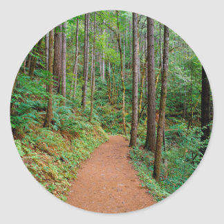 Forest Quiet Trail Columbia River Gorge Classic Round Sticker