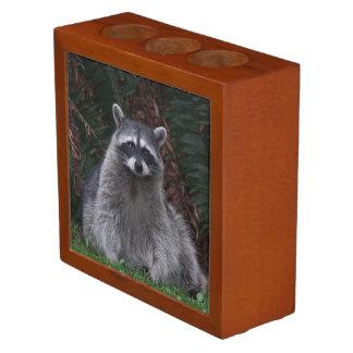 Forest Raccoon Photo Desk Organiser