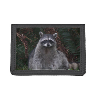 Forest Raccoon Photo Trifold Wallet