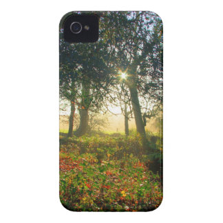 Forest Rainbow iPhone 4 Case-Mate Case