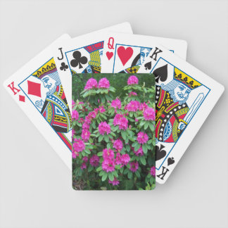 Forest Rhododendron Poker Deck