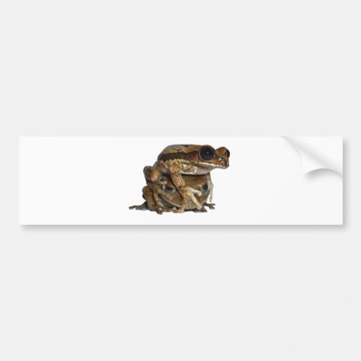 Forest riser frog duo bumper sticker