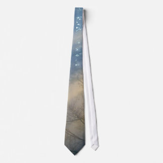 FOREST SCENERY Tie Series