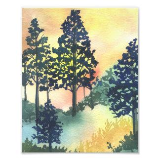 Forest Silohuette Art Print Photographic Print