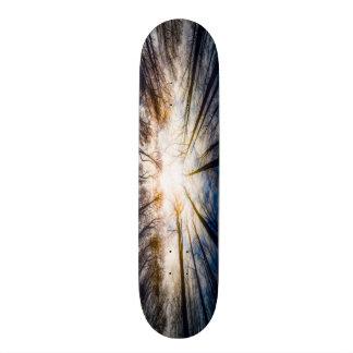 Forest Sky Element Custom Pro Trick Deck Skateboard