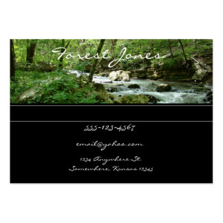 Forest Stream business card