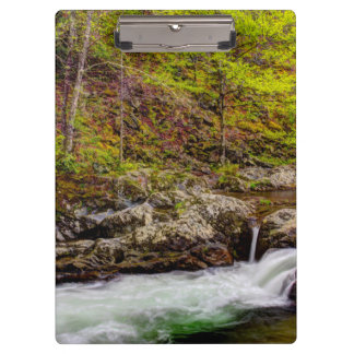 Forest Stream In Great Smoky Mountains Clipboard