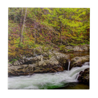 Forest Stream In Great Smoky Mountains Small Square Tile
