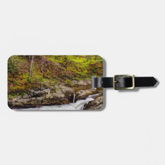 Forest Stream In Great Smoky Mountains Tags For Luggage