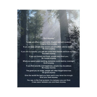 Forest Sun Do It Anyway Stretched Canvas Prints