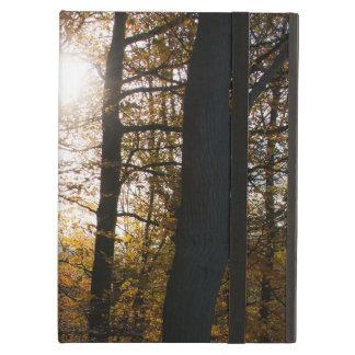 Forest sun iPad cover