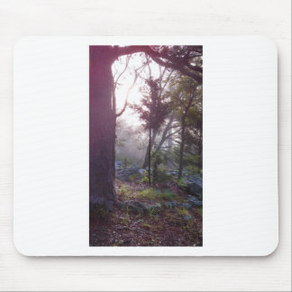 Forest Sunrise Mouse Pads