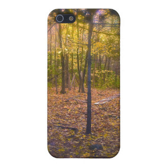 Forest Trail Vermont Foliage iPhone 5/5S Cover