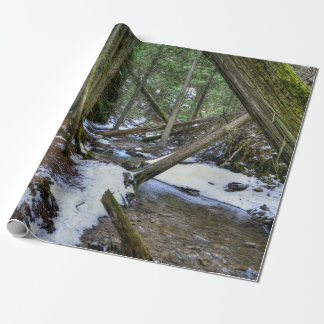 Forest Trails Walking in BC, Canada Wrapping Paper
