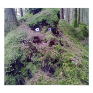 Forest Troll Photographic Print