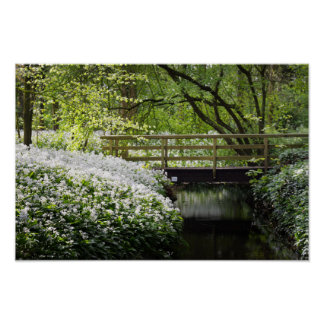 Forest Wildflowers Spring Nature Poster