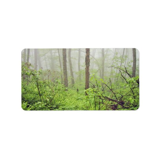 Forest with fog label
