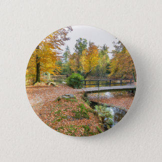 Forest with pond and bridge in fall colours 6 cm round badge