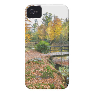 Forest with pond and bridge in fall colours Case-Mate iPhone 4 case