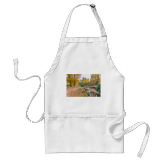 Forest with pond and bridge in fall colours standard apron