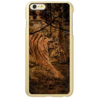 Forest Woodland wildlife Majestic Wild Tiger