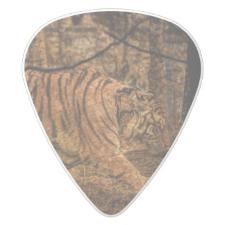 Forest Woodland wildlife Majestic Wild Tiger White Delrin Guitar Pick