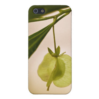 Forever and Ever Covers For iPhone 5