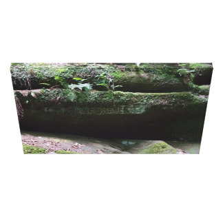 Forever in nature canvas print