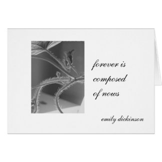 """Forever is composed of nows."" Emily Dickinson Card"