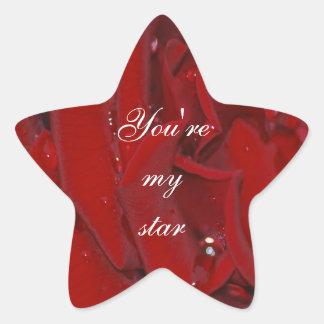 Forever Love Rose Star Sticker
