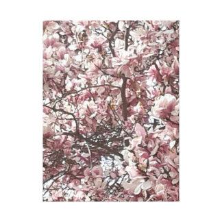 Forever Spring Magnolia Canvas Print