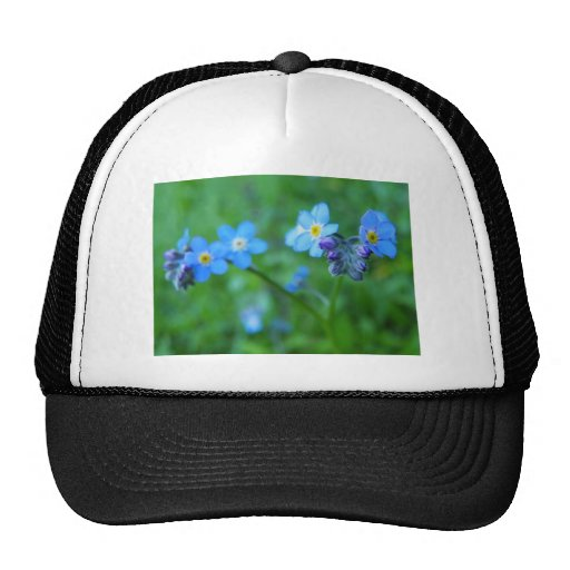 Forget-me-not Blues Trucker Hats