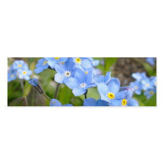 Forget Me Not Bookmark Business Card