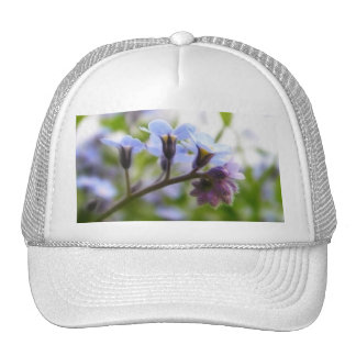 Forget Me Not Buds Hats
