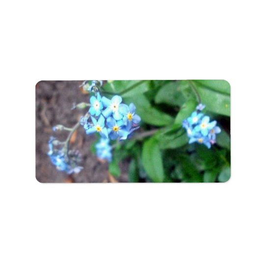 Forget-me-not flowers address label